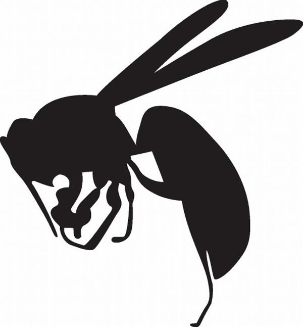 毎年30人は命を落とす!アウトドアでのヘビ&ハチ_1