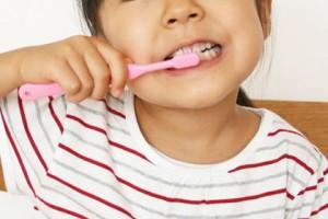 歯並びが良い乳歯は危険?今からできる丈夫な永久歯作り_2