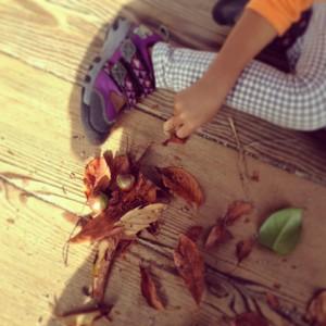 『体験』をプラスして!子どもも楽しめる紅葉狩り_3
