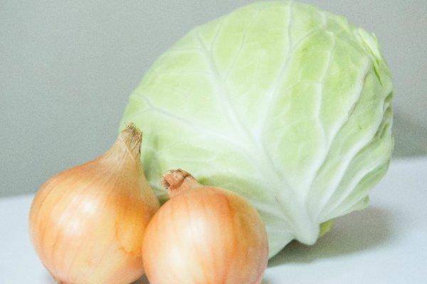 ダイエットに美肌効果も!植物性乳酸菌を積極的に摂る『菌活』のススメ_2