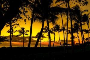 おしゃれでかわいいだけじゃない!ハワイネームの深い意味って?