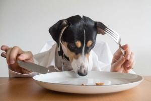 SNSでおいしいと人気の『無印良品のレトルト食品』、食べるべきはコレ!