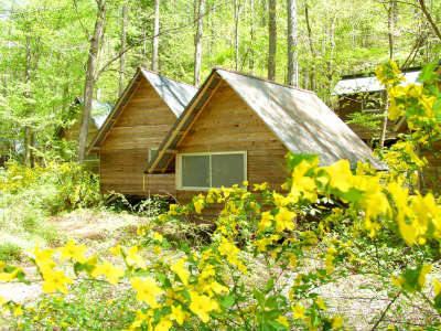 キャンプ コテージ