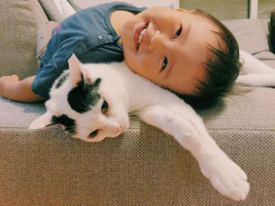みんなの猫暮らし2