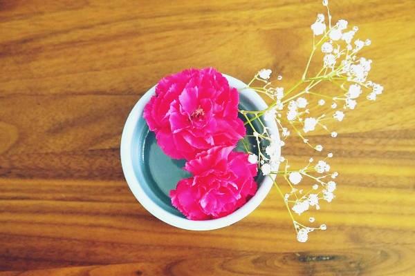 日々の暮らしに花を。ワンコインで生花を楽しむコツ