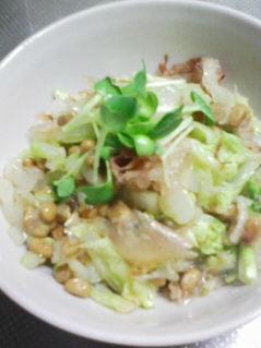白菜レシピ4