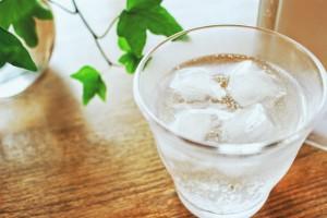 飲むだけなんてもったいない!いつものお料理がさらにおいしくなる『炭酸水クッキング』がすごい!