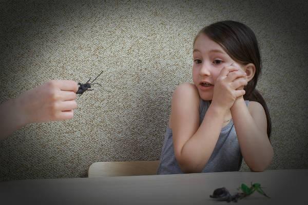 身近なアレがGに効く!駆除剤を使わないゴキブリ対策法