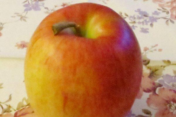『りんごダイエット』を成功させるには?正しいやり方とおすすめレシピ3選