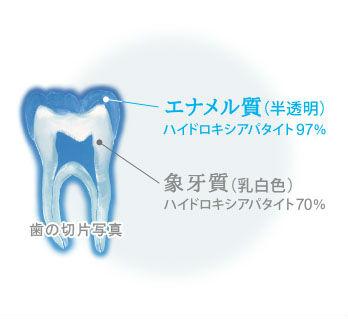 歯の白さを保つオーラルケア