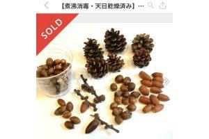 【体験談】子どもが拾った木の実が『メルカリ』で即日完売!相場や売れるコツは?